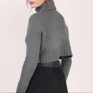 Tobi turtle neck sweater